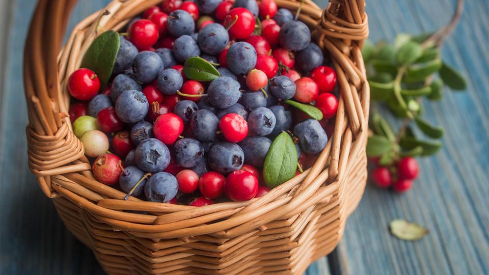 مواد غذایی مفید برای کبد