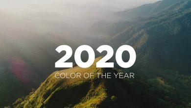 Photo of فرایند انتخاب رنگ سال چگونه است؟