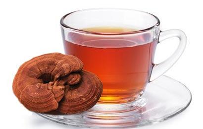چای و گانودرما