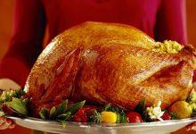 Photo of مرغ شکم پر خانگی