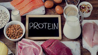 Photo of پروتئین چیست و مصرف آن چه فوایدی برای بدن دارد؟