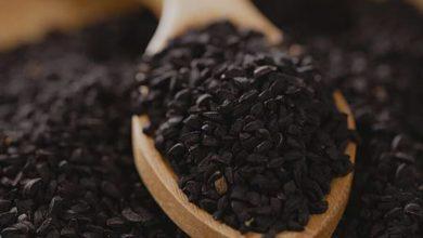 Photo of مزایای سیاه دانه و روغن آن برای سلامتی و پوست و مو چیست؟