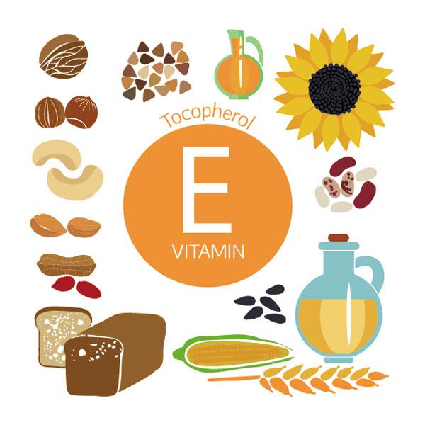 ویتامین E، زینک، کلسیم و سایر مواد مفیدی که در سه ماه دوم بارداری باید مصرف شود.