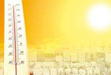 Photo of 10 راهکار کاربردی برای سلامت بدن در هوای گرم