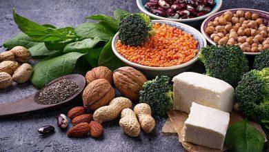 Photo of پروتئین گیاهی جایگزینی برای پروتئین گوشتی
