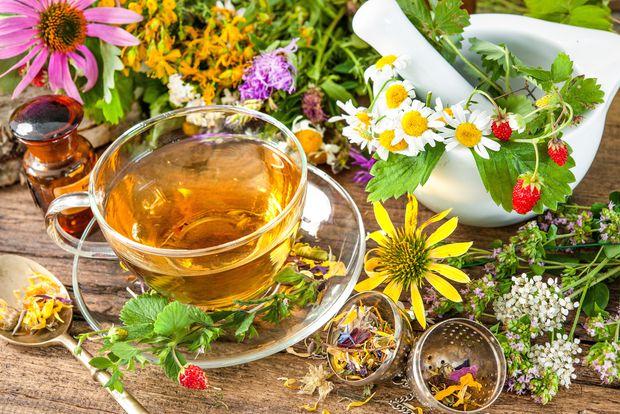 استفاده از داروهای گیاهی برای درمان سردرد