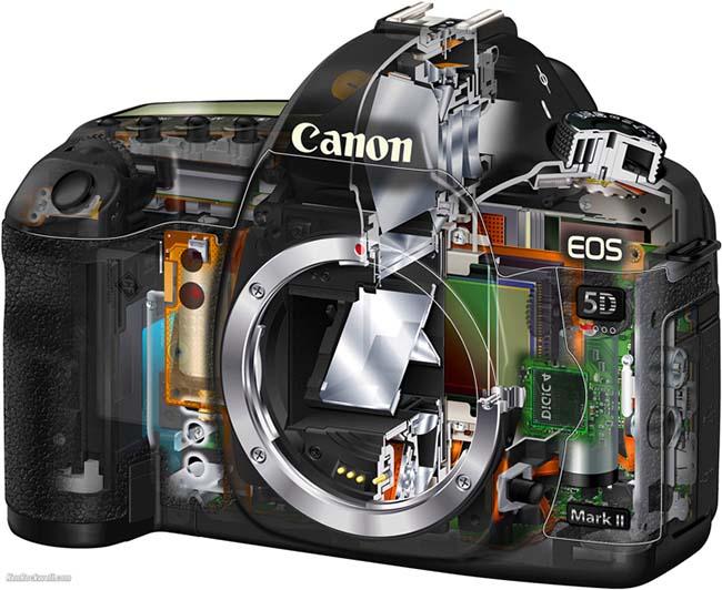 نمایی از ظاهر درونی دوربین