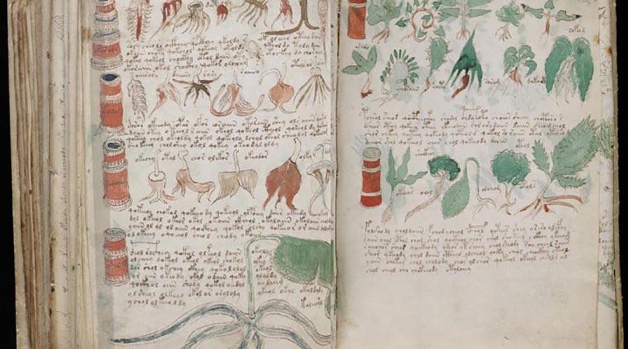 اکتشافات باستان شناسی : نسخه خطی وونیچ