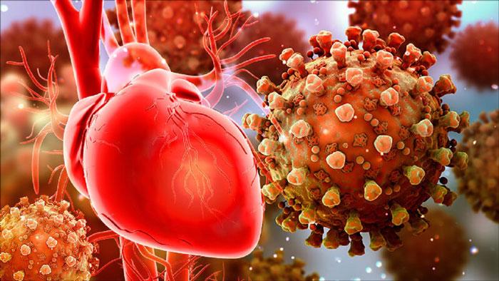 عفونت باعث بیماری قلبی می شود