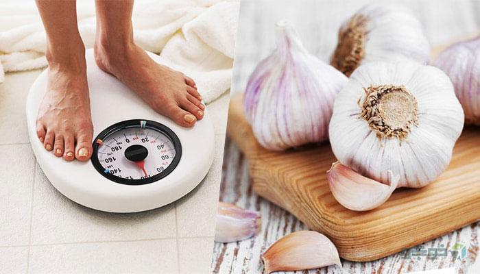 کاهش وزن با مصرف روزانه سیر به صورت ناشتا