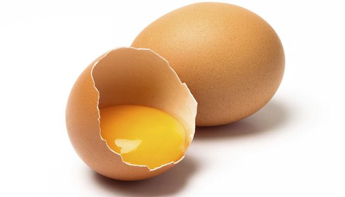 استفاده از پروتئین در رژیم سبز مدیترانه ای