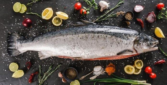 ماهی سالمون یا آزاد