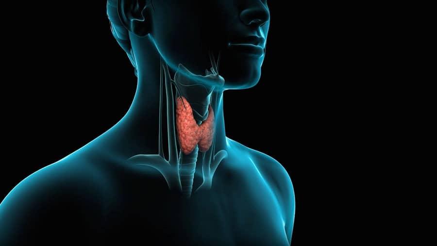 فواید کاهو در کاهش التهاب