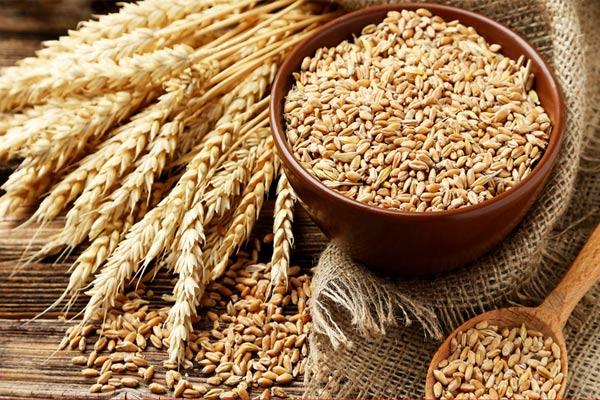 رژیم غذایی مناسب برای لاغری با مصرف غلات موثر تر می شود