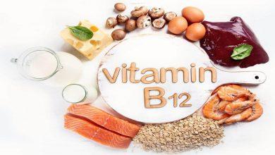 Photo of مواد غذایی حاوی ویتامین B12 و نکاتی که باید بدانید!