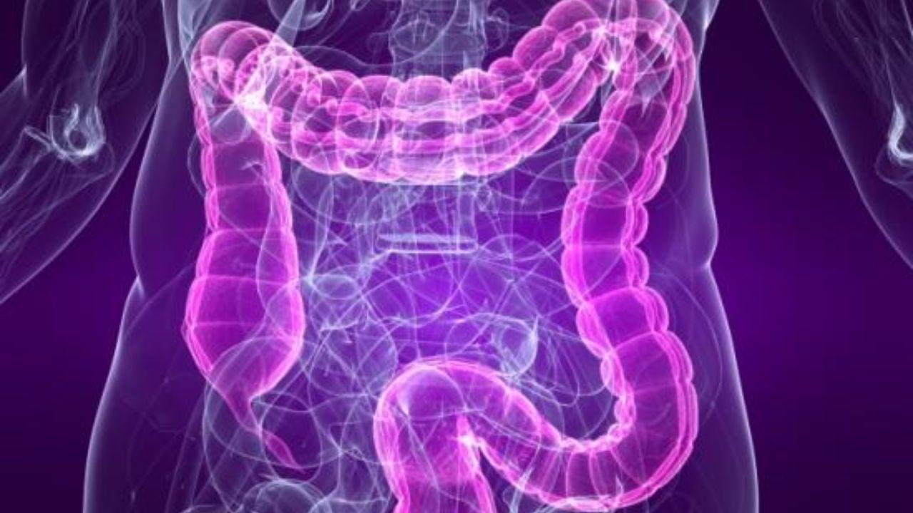 عملکرد روده های خود را با مصرف گل گاو زبان بهبود بخشید