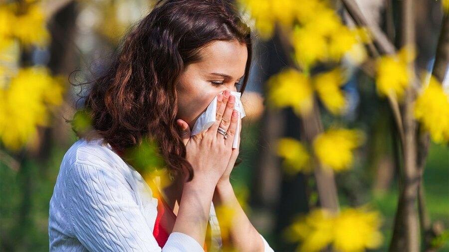 حساسیت فصل بهار