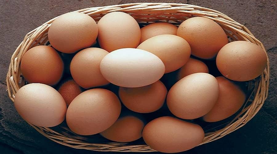 مصرف تخم مرغ می تواند حساسیت زا باشد