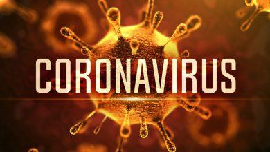 Photo of راهکار هایی برای تقویت سیستم ایمنی بدن در برابر ویروس کرونا !