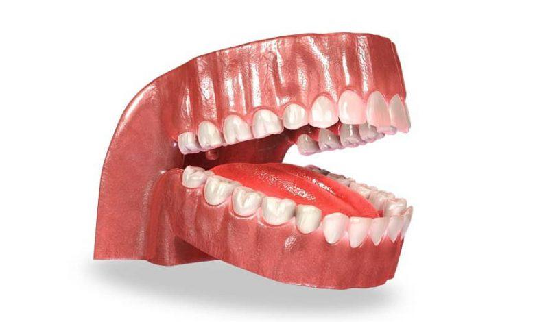 Photo of آناتومی دندان و هر آنچه که درباره آن باید بدانید!