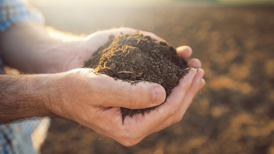 خاک را لمس کنید.