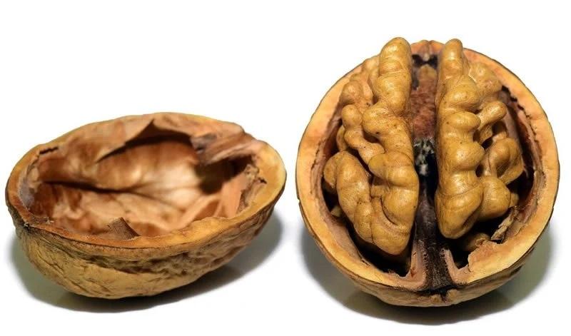 یکی دیگر از میوه های خشک که به کاهش وزن کمک می کند گردو است