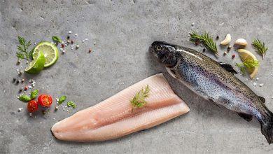 Photo of طرز تهیه ماهی قزل آلا + بیان تفاوت آن با ماهی سالمون