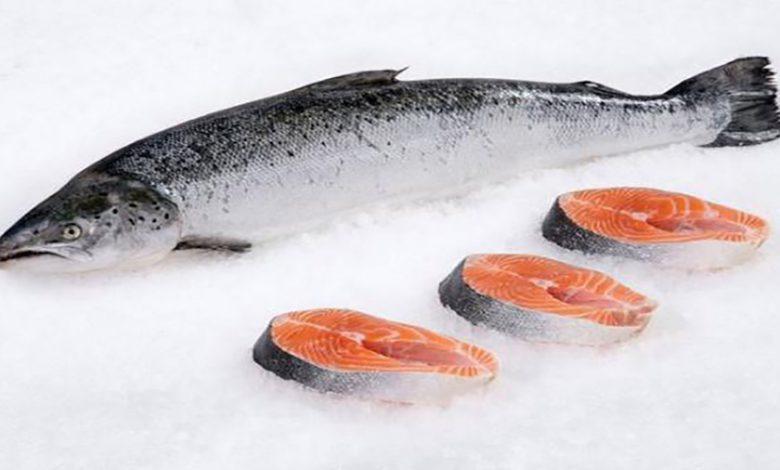 Photo of طرز تهیه ماهی سالمون به روش هایی آسان و کاربردی