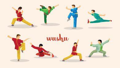 Photo of ورزش ووشو چیست؟ تمام مواردی که باید در مورد آن بدانید!