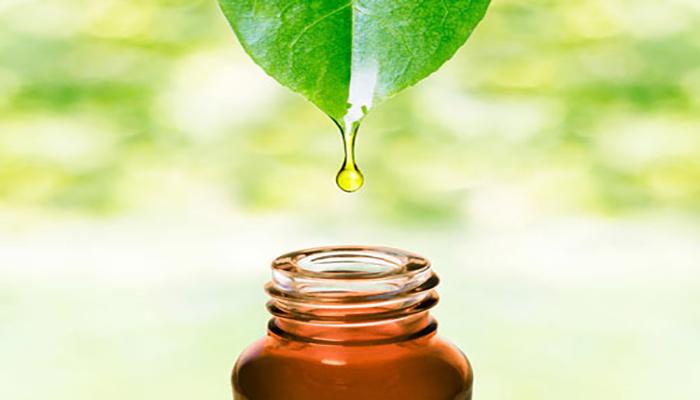 استفاده از روغن درخت چای.
