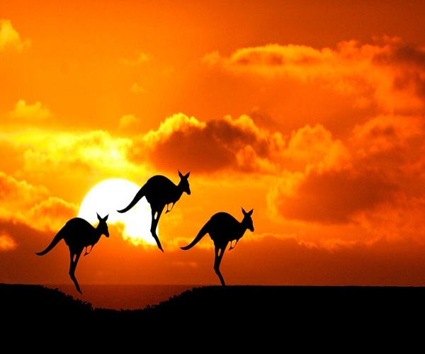 استرالیا یک کشور زیبا و بسیار مجهز است و مناسب برای مهاجرت و زندگی است.
