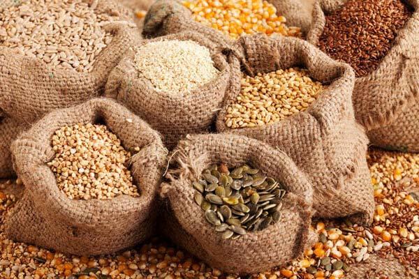 مصرف این دانه ها در غذا یا به صورت خام، می تواند رشد مو را تقویت کند.