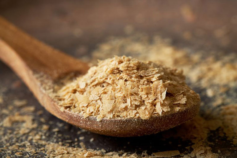 مخمر تغذیه ای، حاوی پروتئین کافی برای رژیم وگان و گیاهی.