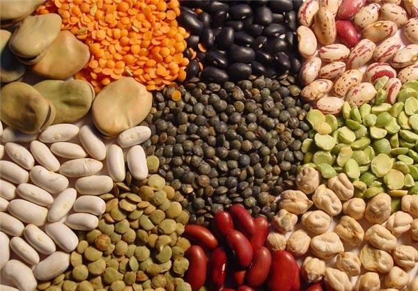 نخود و بیشتر انواع حبوبات، منابع غنی برای تامین پروتئین گیاهی هستند.