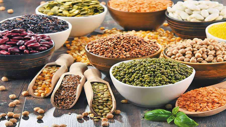 پروتئین وگان و گیاهی