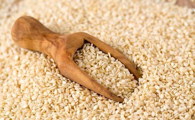 کنجد، منبع مناسب پروتئین گیاهی.