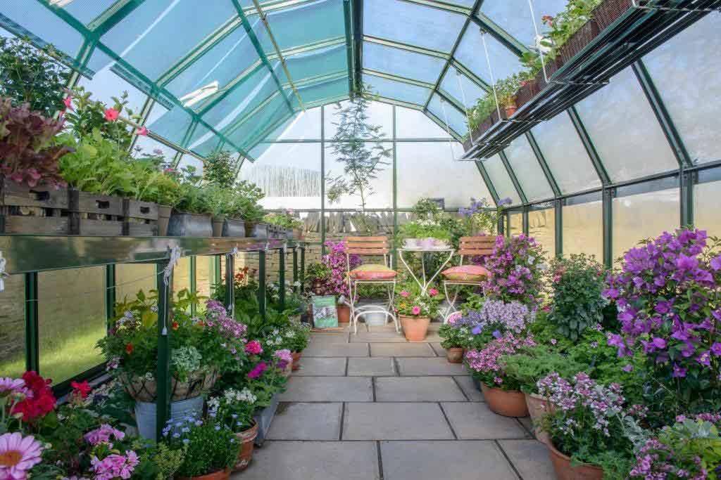 پرورش گیاهان زینیتی در گلخانه