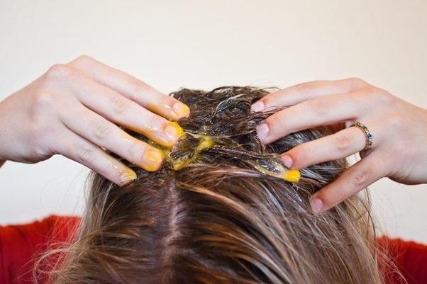 خواص تخم بلدرچین بر بهبود کیفیت مو